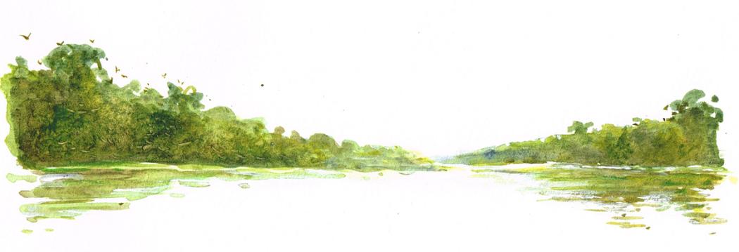 Fleuve Zambese - Zambie - 2011