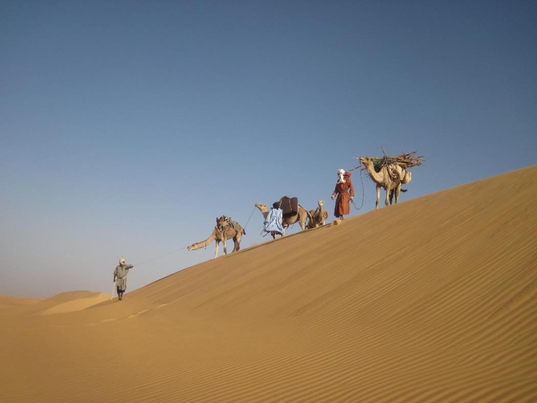 Le desert Mautianien - 2011