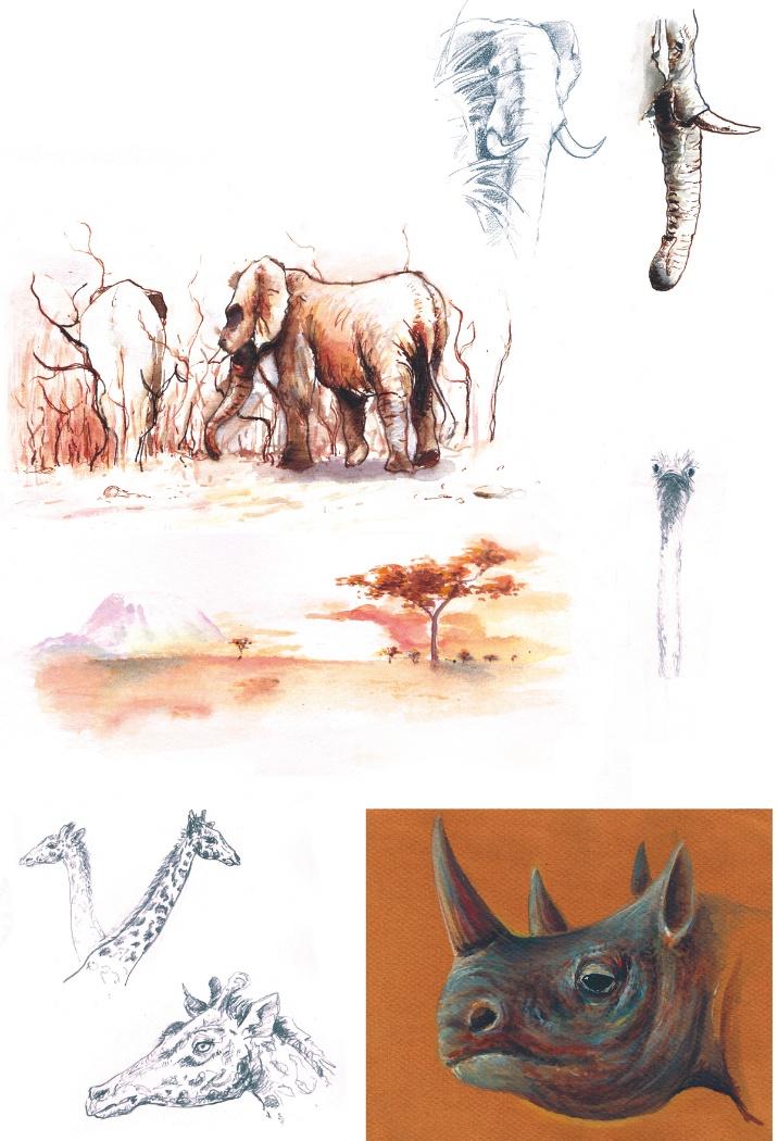 Rencontres animalieres - 2011