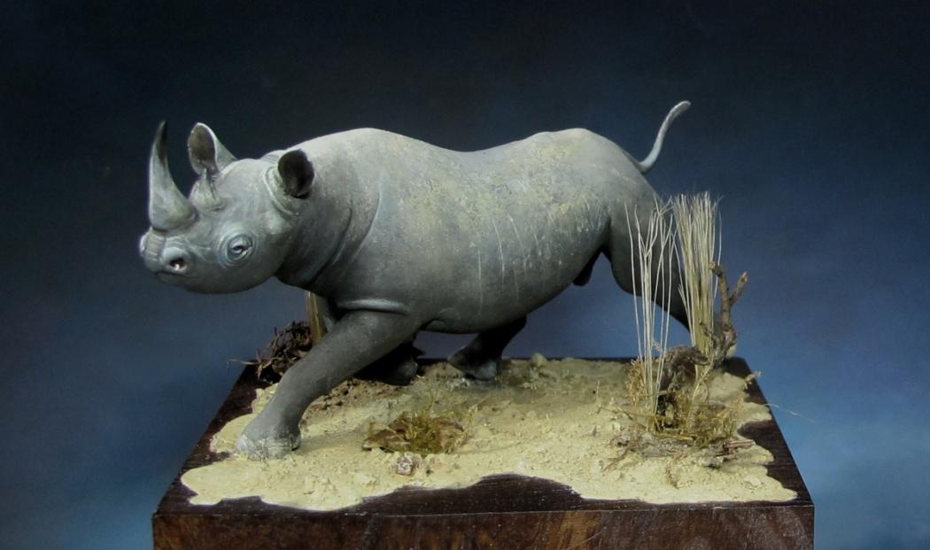 rhino4