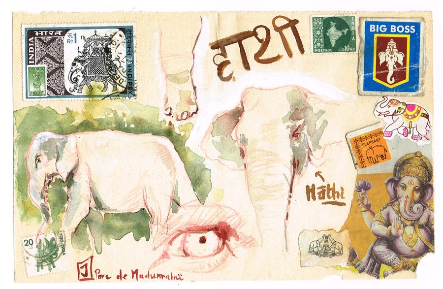 Eléphants au parc de Madumalai